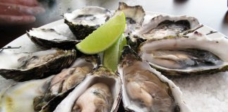Oysters in their shells served with lime wedges