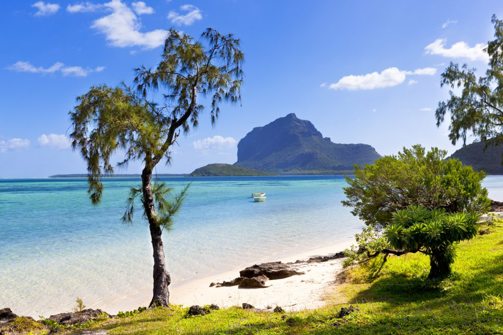 tropical lonely beach at mauritius island, africa.