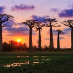 Things to see in Madagascar | An Isolated Paradise