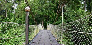 Segama Suspension Bridge.