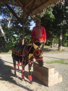 Sabahan man with a decorated horse