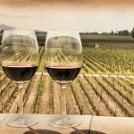 Wine-dozed in Mendoza | Argentina