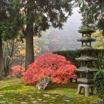 11 of the Best Japanese Gardens Outside Japan