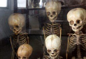 Skeletons on display - unusual things to do in Bangkok