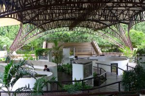Queen Saovabha memorial institute - unusual things to do in Bangkok