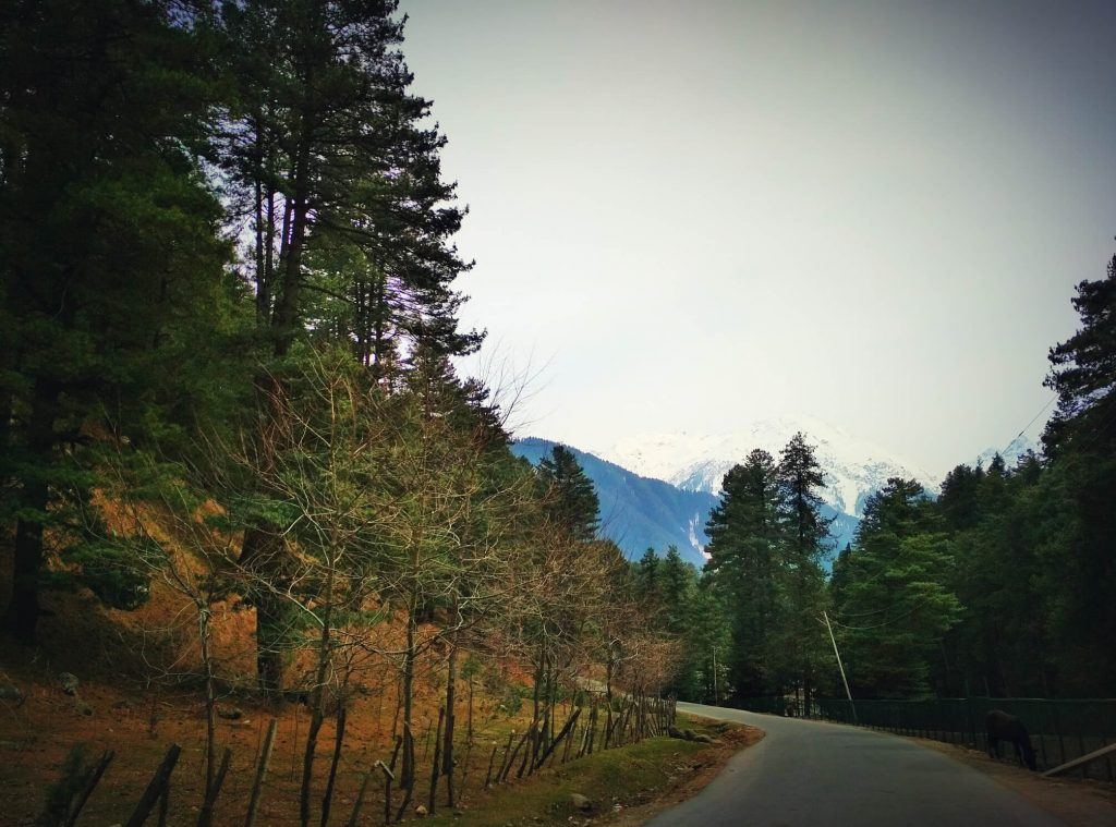 Enjoy a magnificent view en route to Pahalgam
