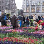 Living in Amsterdam! – Part I