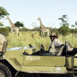 How To Go On Ethical Safaris In Africa