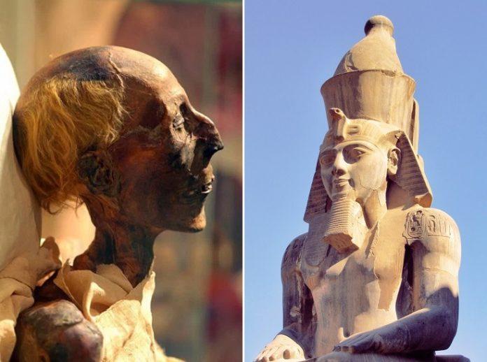 Mummies, Ramses, Egypt