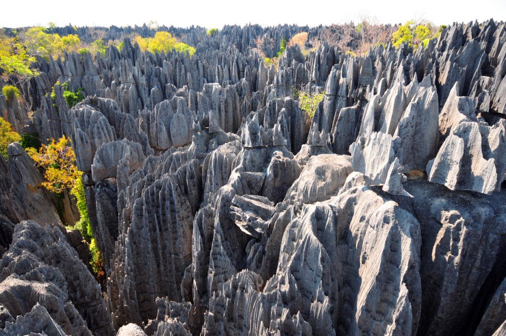 Tsingy de Bemaraha National Park Madagascar