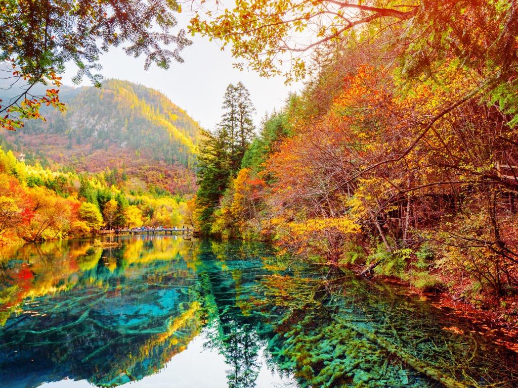 the-five-flower-lake-jiuzhaigou-nature-reserve-china