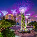 A Guide to the Top 30 Places to Visit in Singapore