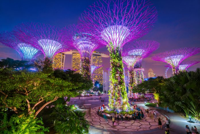 Singapore Supertrees - places to visit in singapore