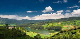 Emerald lake in Ooty surrounded by tea plantations
