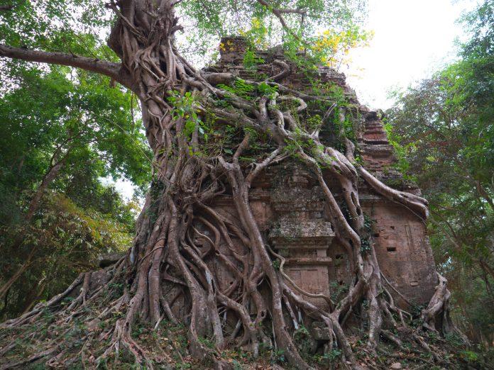 Sambor Prei Kuk in Cambodia