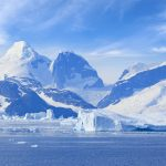 Come See The Antarctica Wildlife - A Destination for Animal Lovers
