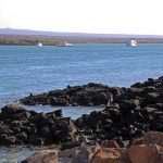 Travel Guide to Baltra Island
