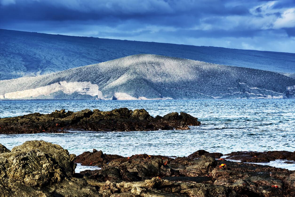 Fernandina Island Galapagos