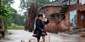 Senior Miao Woman with Geese, in China