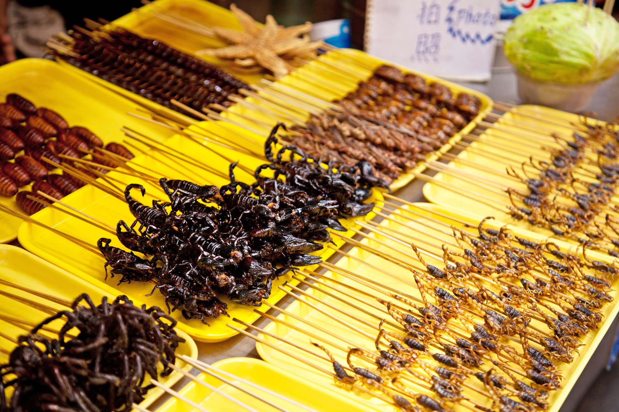 Chinese food market with a selection of scorpions and other insects - chinese customs