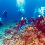 Diving in Bali: Creating a Memorable Experience