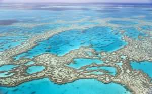 Aerial view of the Great Barrier Reef in Australia