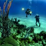 America's first underwater museum opens in Florida