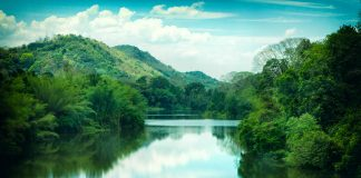 Periyar lake in Kerala - relax through travel