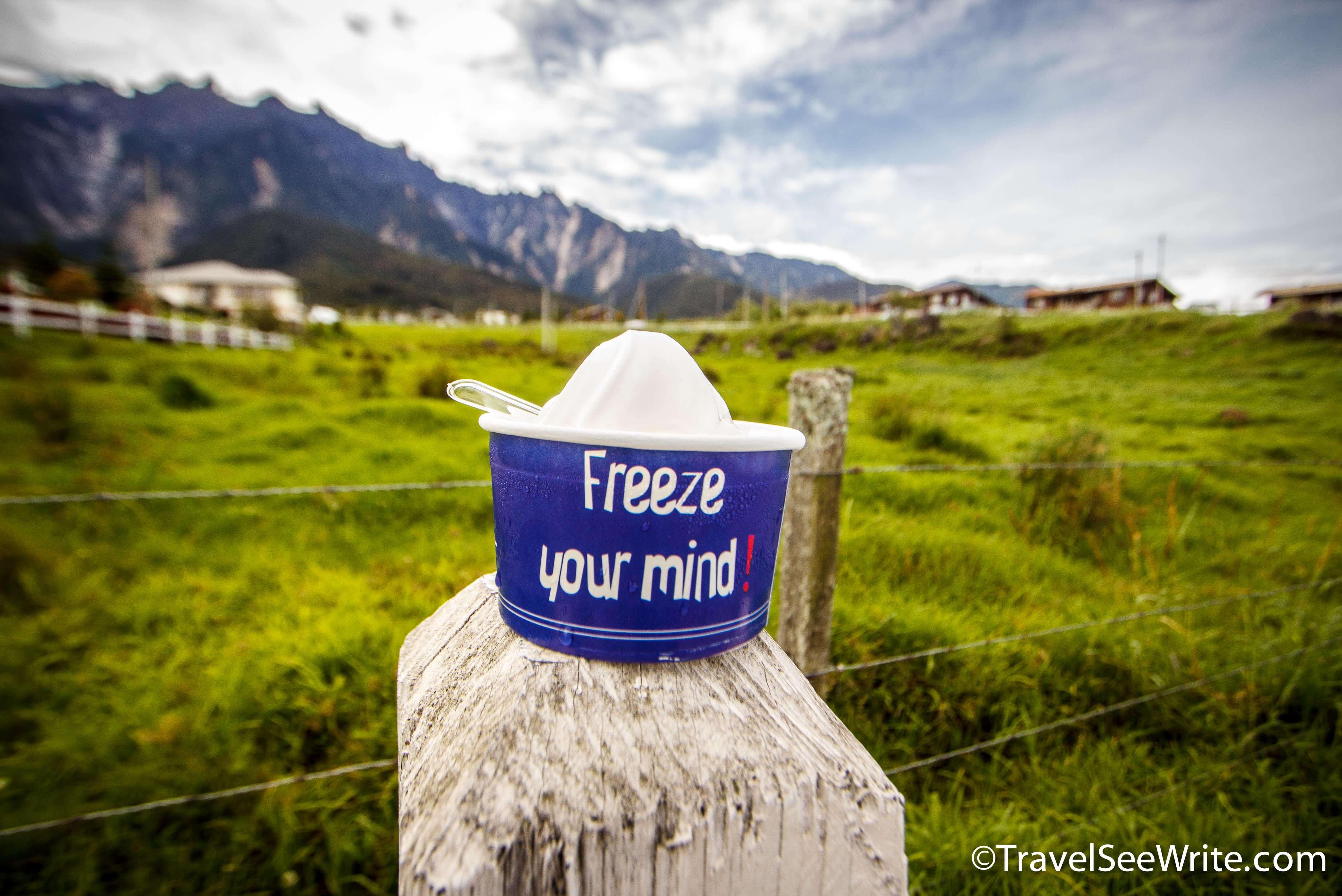 Desa Dairy's delicious frozen yogurt - southeast asia travel