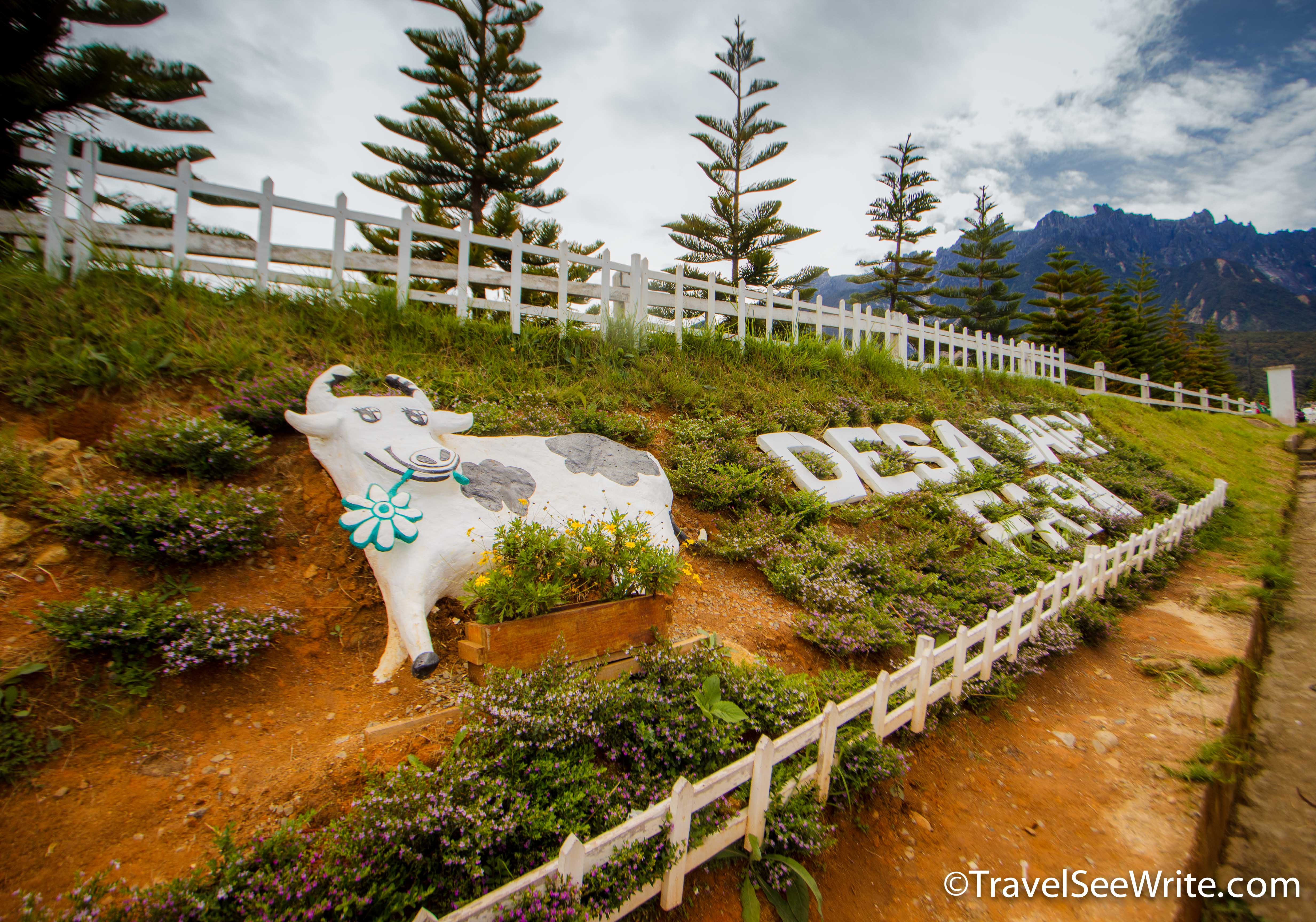 Desa Dairy Farm Entry Sign - southeast asia travel