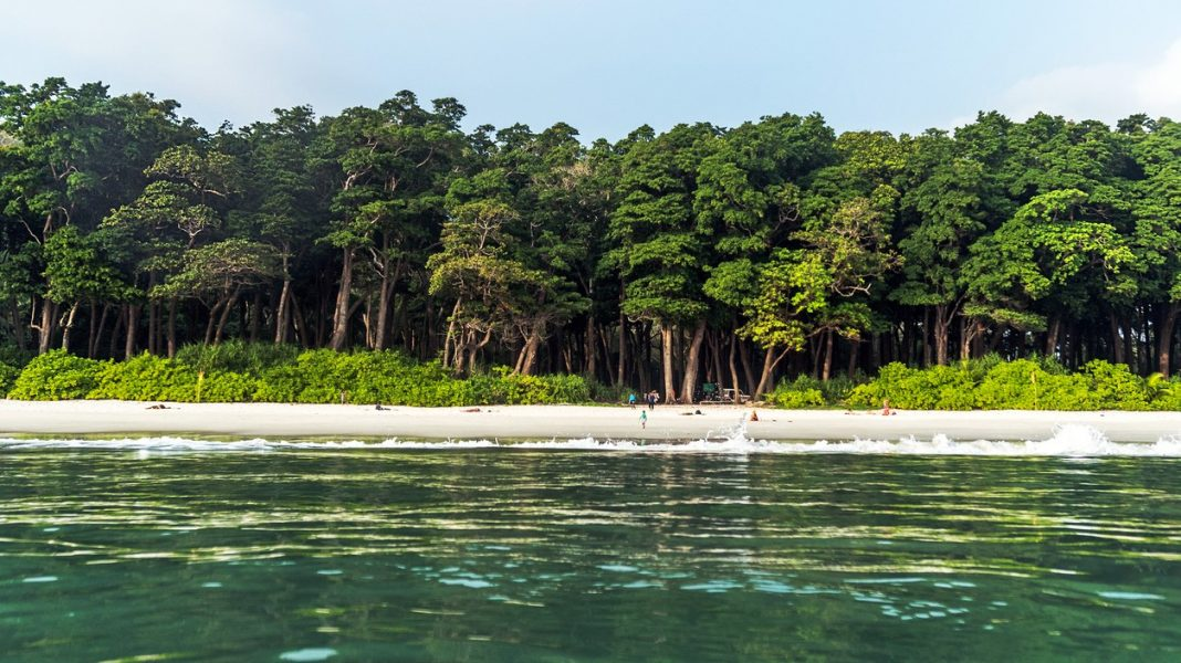 Stunning view of Radhanagar Beach on Havelock Island.