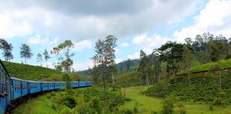 Train from Kandy to Nuwara Eliya among tea plantations and mountains - scenic train routes