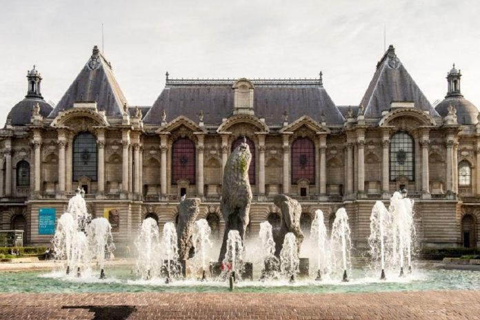 Palais des Beaux-Arts things to do in Lille