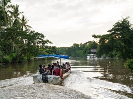 River cruise on the Kawa Kawa River - day trips from Kota Kinabalu