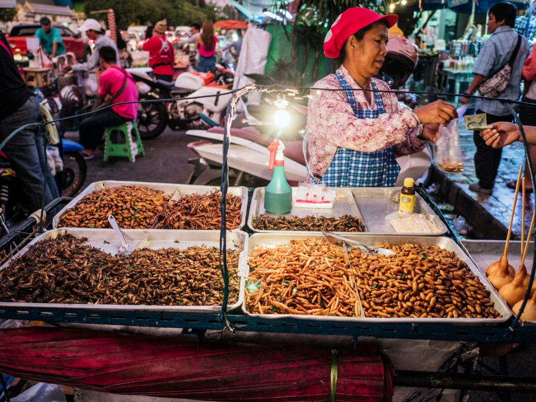 Fried insects for sale at Chatuchak market Bangkok - best street food in Bangkok