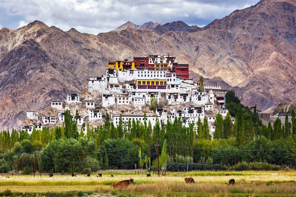 Ladakh travel guide Thiksey gompa,