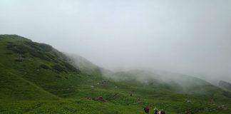 Trekkers going down a grassy plain