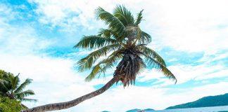 A girl on the Anse Fourmis Beach, Seychelles - Budget guide to Seychelles, Budget Destinations