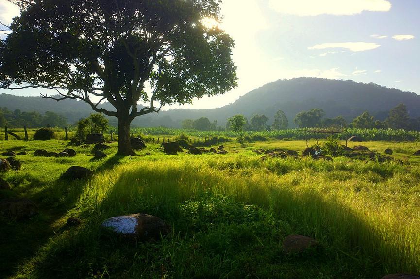 Yelagiri-Hills, long drive places in Bangalore