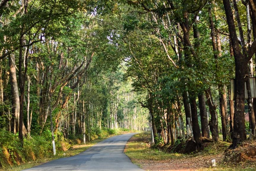 long drive places in Bangalore to Sakleshpur