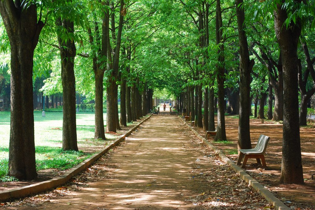 Cubbon Park is one of Bangalore's cycling trails