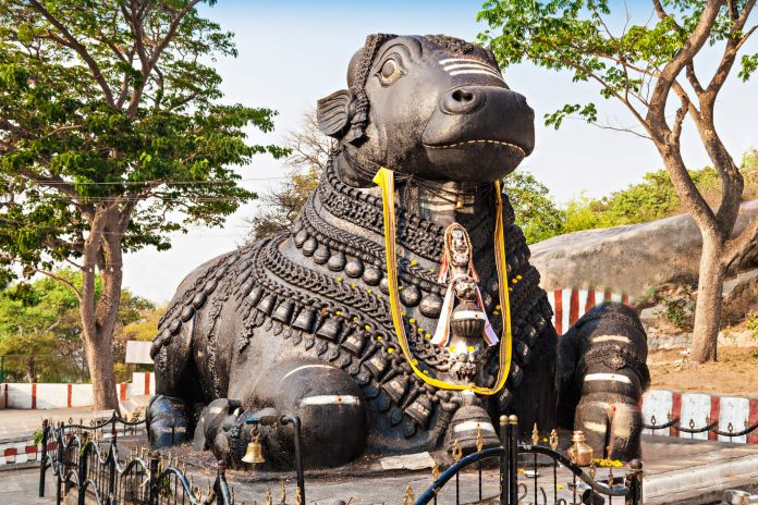 The crouching Nandi on the Chamundi Hill