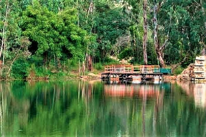 Kotla-Vijayabhaskara-Reddy-Botanical-Garden