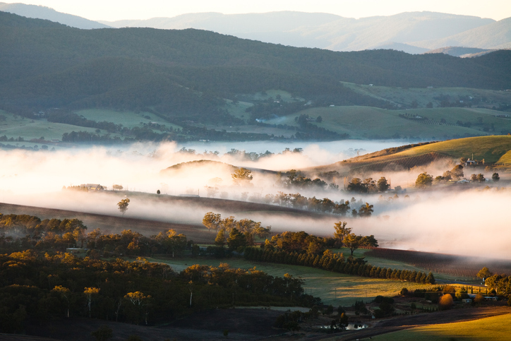 A view across a valley at sunrise in the Yarra Valley - things to do in Melbourne