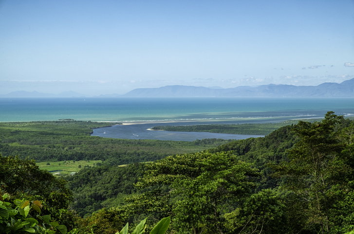 Looking out over the Daintree River and rainforest in North Queensland