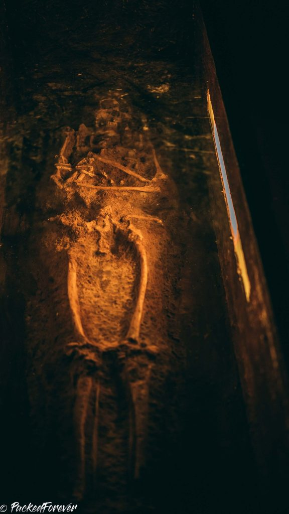 Jakarta Museum's prehistoric collection