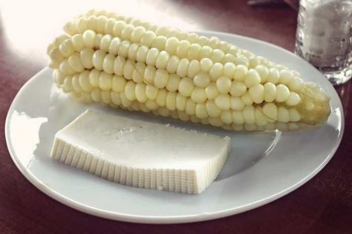 Plate with cob of Andean corn and Ecuadorian cheese.
