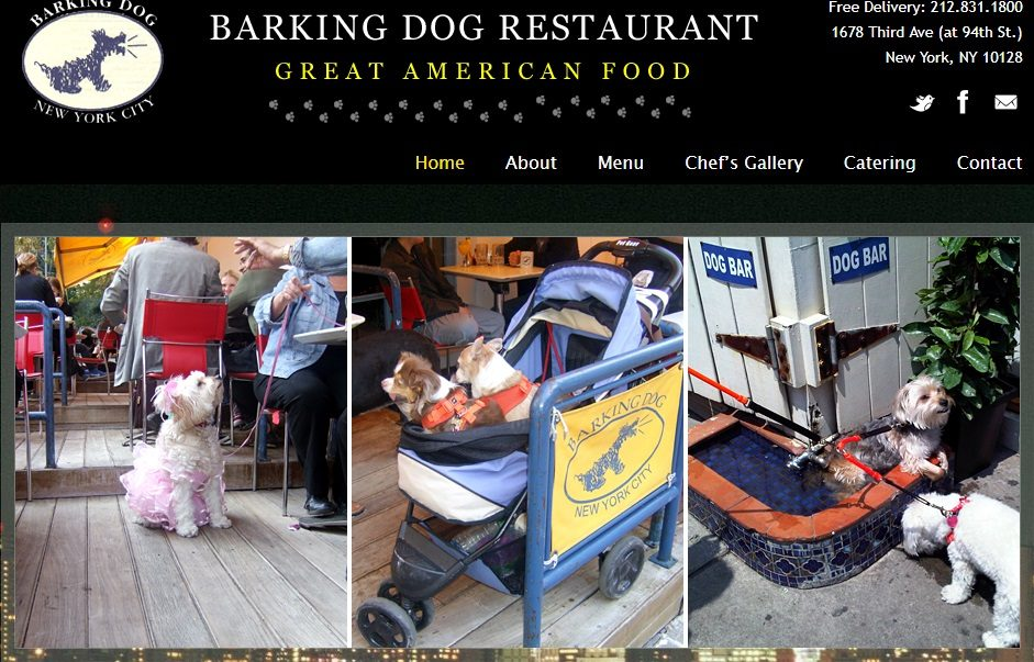 Barking dog restaurant - pet-friendly restaurants and food places