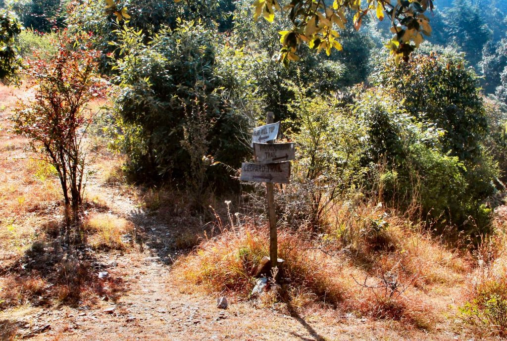 Jabarkhet trekking trails