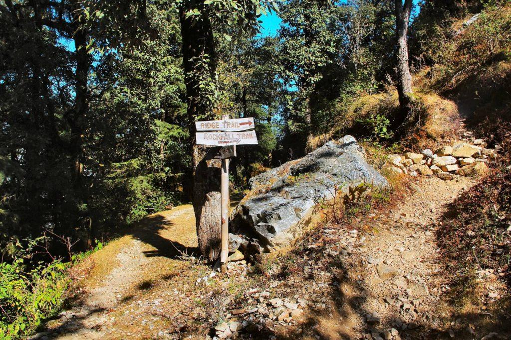 Jaberkhet Nature Reserve Trekking trail, Landour, Uttarakhand